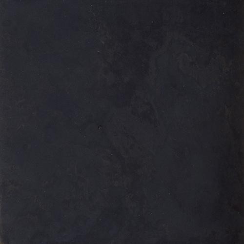 黒斑染(標準色)